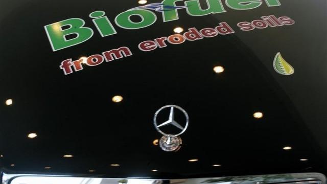 Biodiesel 6